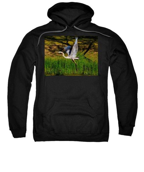 Blue Heron In Flight Sweatshirt