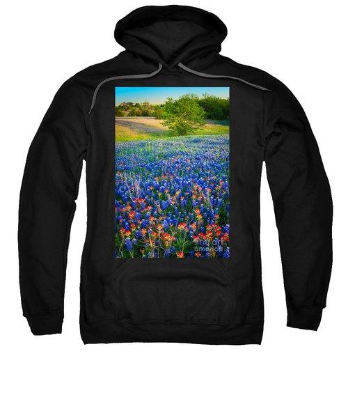 Bluebonnet Carpet Sweatshirt