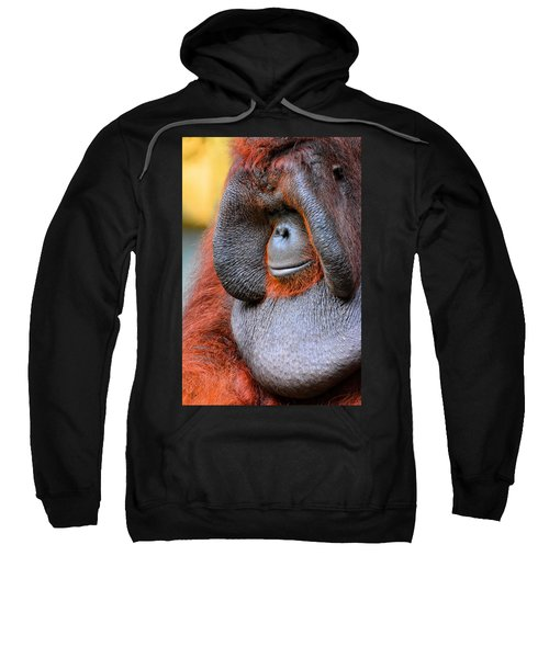Bornean Orangutan Vi Sweatshirt by Lourry Legarde