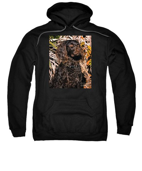 Boykin Spaniel Portrait Sweatshirt by Timothy Flanigan