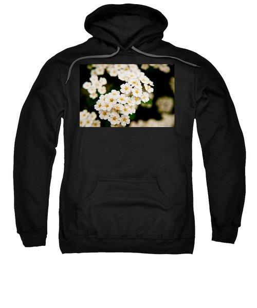Bridal Veil Spirea Sweatshirt