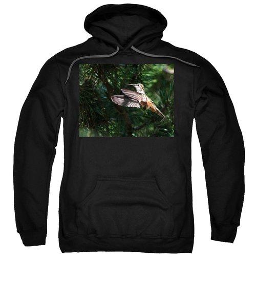 Broad-tailed Hummingbird Sweatshirt