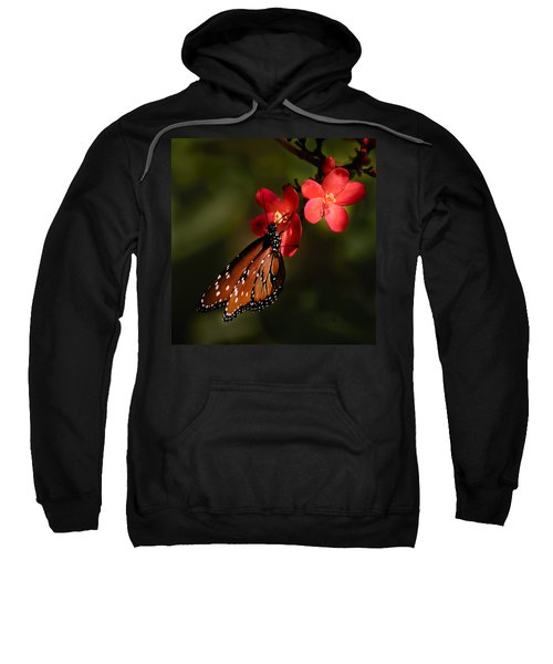 Butterfly On Red Blossom Sweatshirt