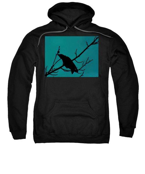 Call Of The Crow On Aqua 2 Sweatshirt