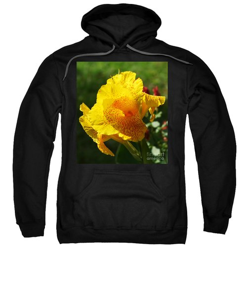 Sweatshirt featuring the photograph Canna Beauty by Kim Pate