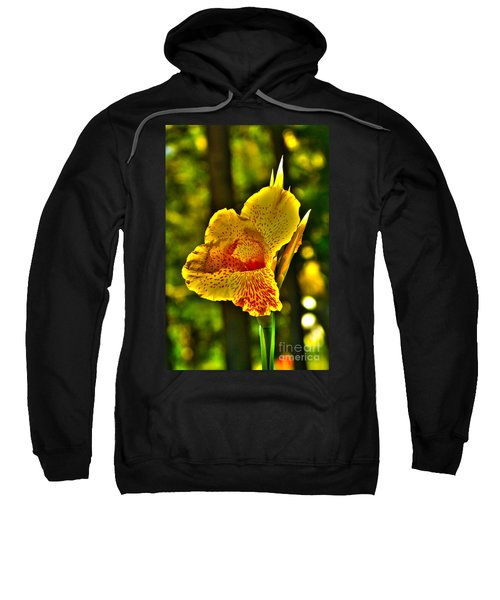 Sweatshirt featuring the photograph Canna Wow by Kim Pate