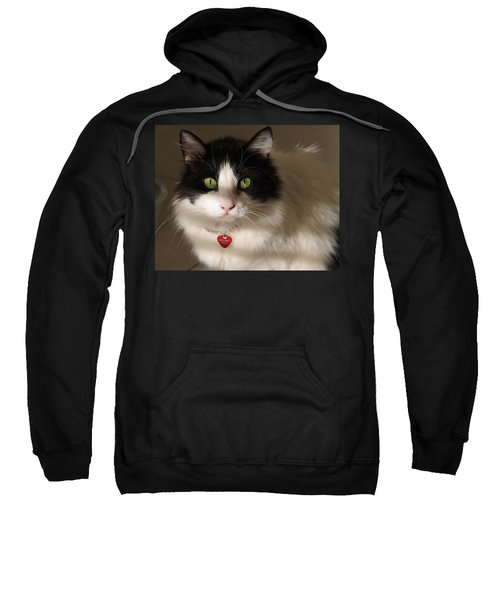 Cat's Eye Sweatshirt