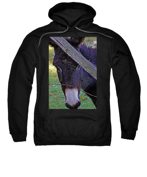Caught In The Web Sweatshirt