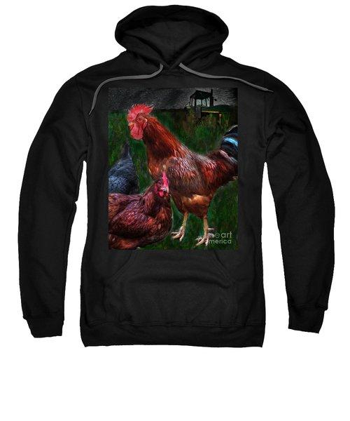 Chickens Sweatshirt