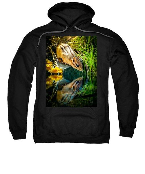 Chipmunk Reflection Sweatshirt