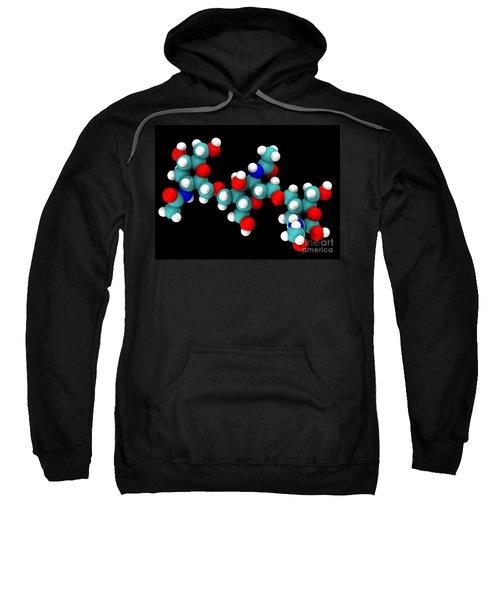 Chitin Molecular Model Sweatshirt
