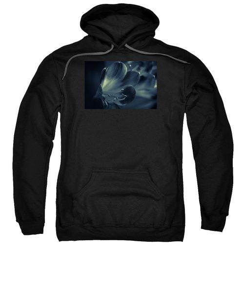 Clivia Miniata II Sweatshirt