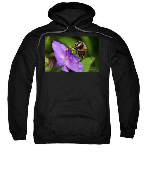 Closeup Of A Bee On A Purple Flower Sweatshirt