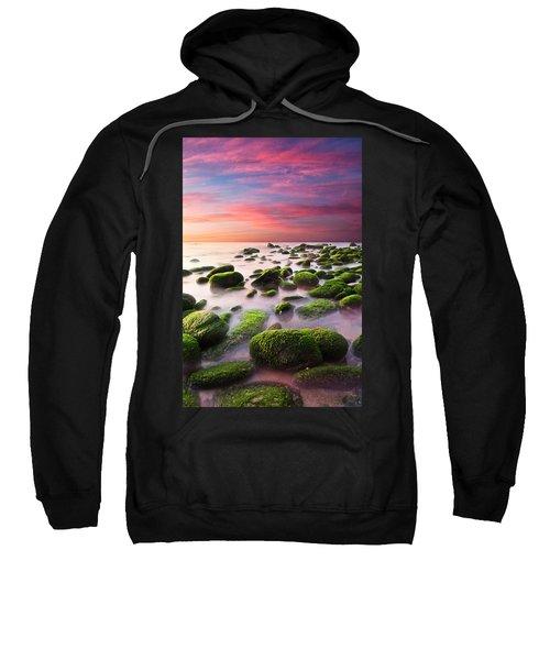 Color Harmony Sweatshirt