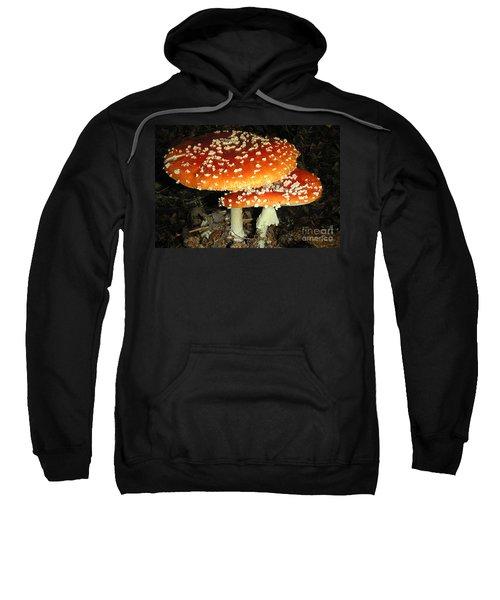 Color In Little Tutka- Alaska Sweatshirt