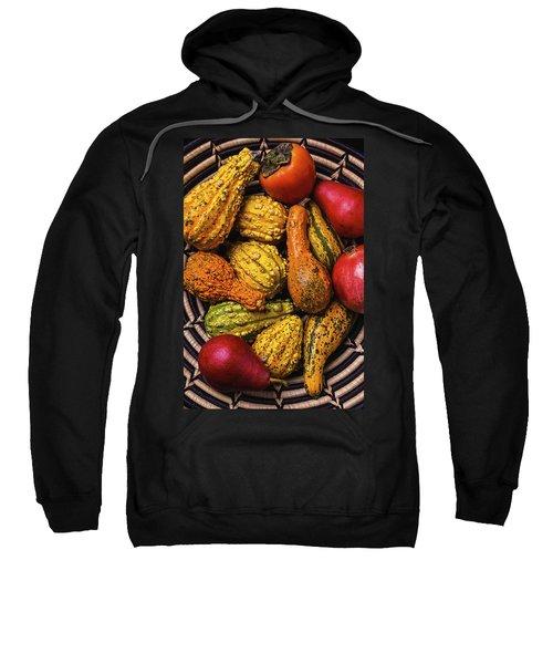 Colorful Autumn Gourds Sweatshirt
