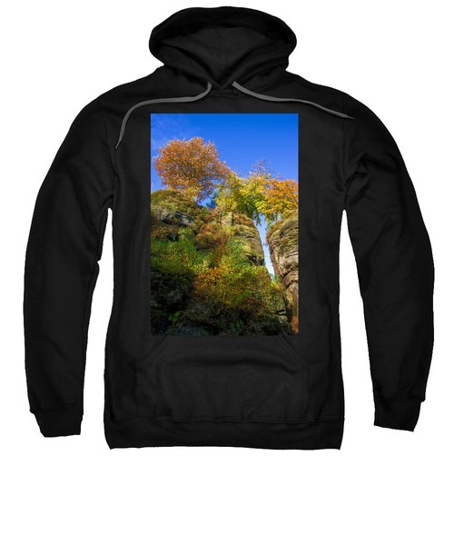 Colorful Trees In The Elbe Sandstone Mountains Sweatshirt