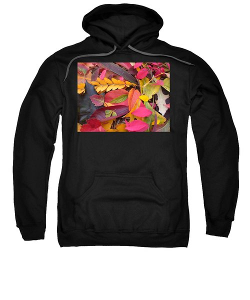 Colors Of Autumn Sweatshirt