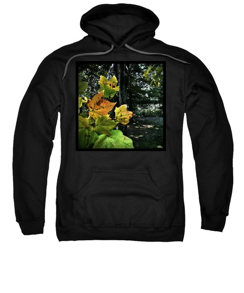 Coming Of Fall Sweatshirt