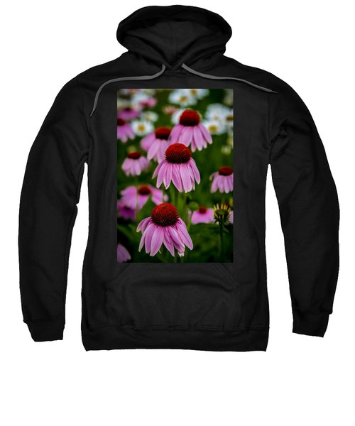 Coneflowers In Front Of Daisies Sweatshirt
