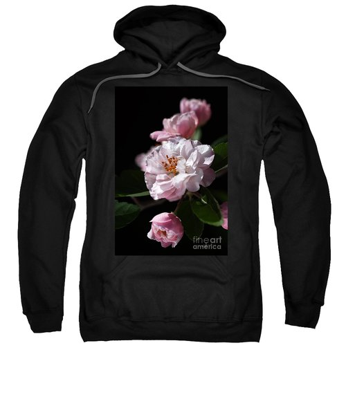 Crabapple Flowers Sweatshirt