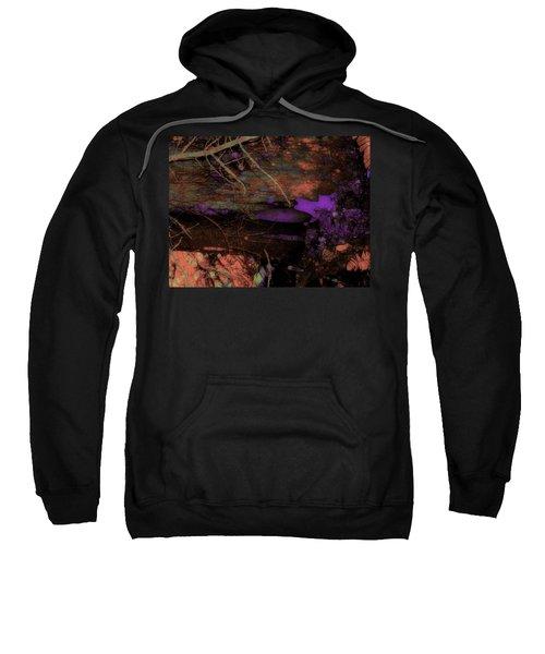 Cul-de-sac Biology Sweatshirt