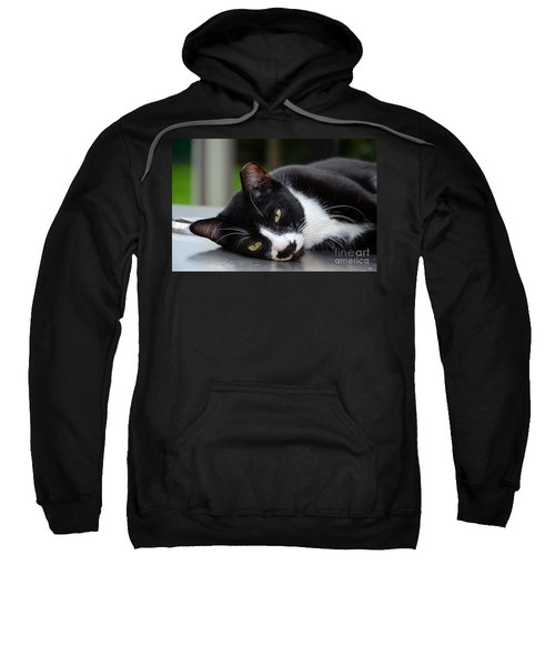 Cute Black And White Tuxedo Cat With Nipped Ear Rests  Sweatshirt