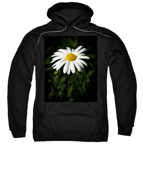Daisy In The Garden Sweatshirt