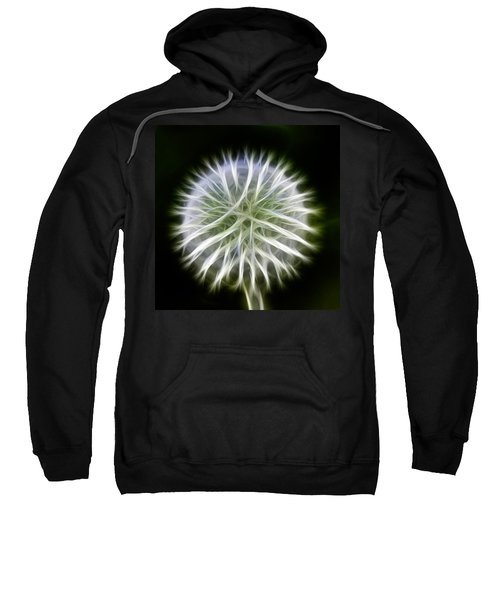 Dandelion Abstract Sweatshirt