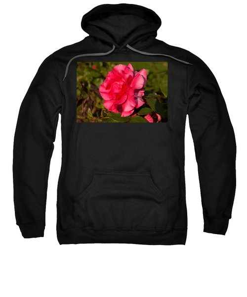 Dark Pink Rose Sweatshirt