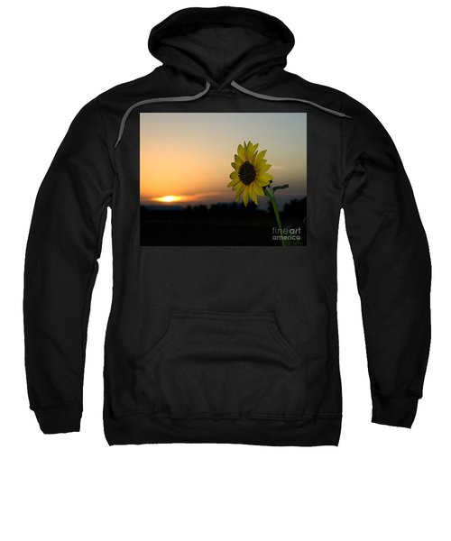 Sweatshirt featuring the photograph Sunflower And Sunset by Mae Wertz