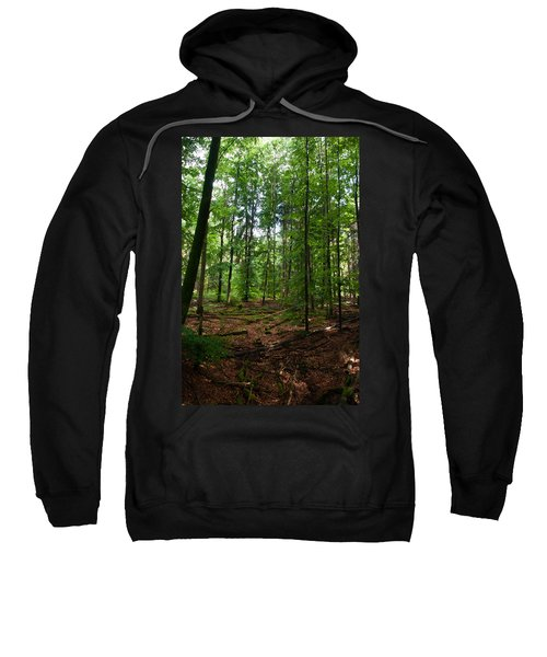 Deep Forest Trails Sweatshirt