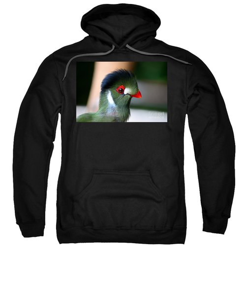 Delicate Green Turaco Bird With Red Beak White Patches And Black Crown Sweatshirt