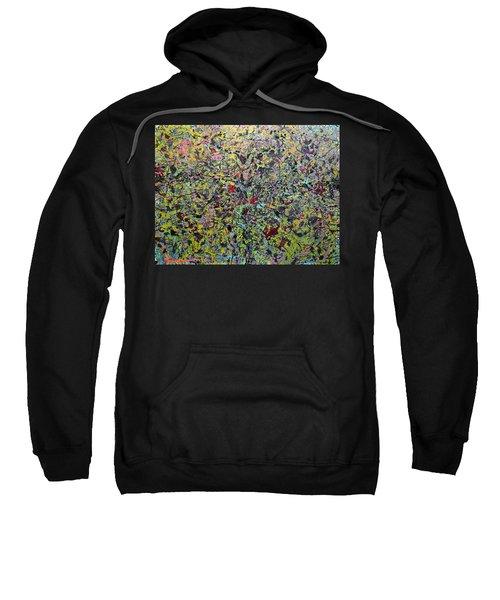 Devisolum Sweatshirt