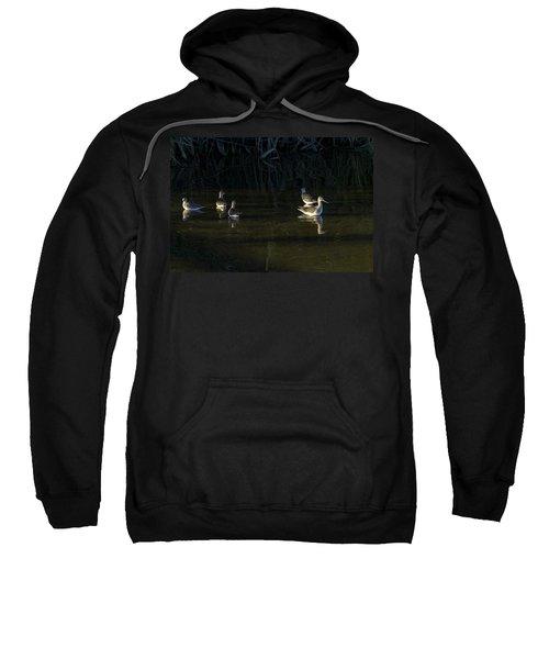 Digital Oil Of Sandpipers Sweatshirt