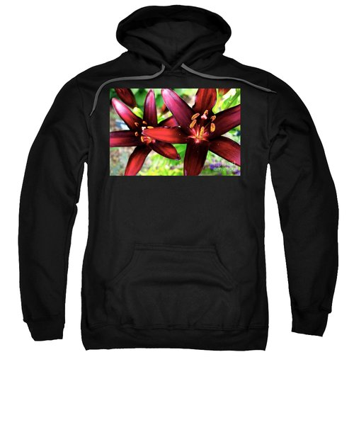 Dimension Lily 2 Sweatshirt by Jacqueline Athmann