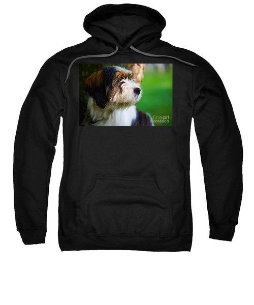 Dog Sitting Next To A Tree Sweatshirt