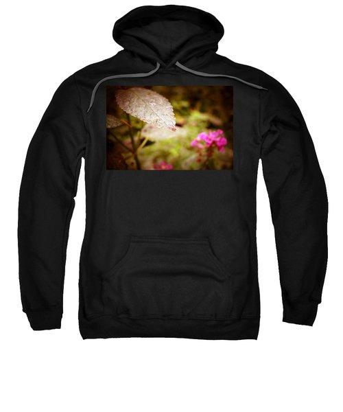 Don't Look Down Sweatshirt