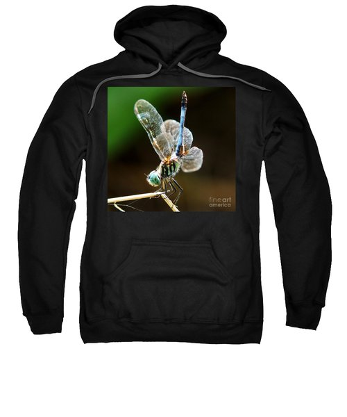 Dragonfly Headstand Sweatshirt