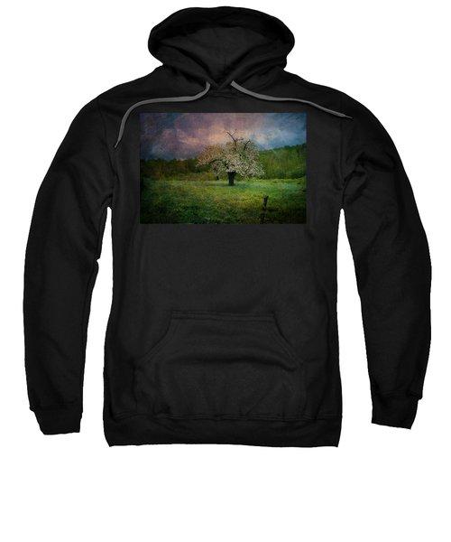 Dream Of Spring Sweatshirt