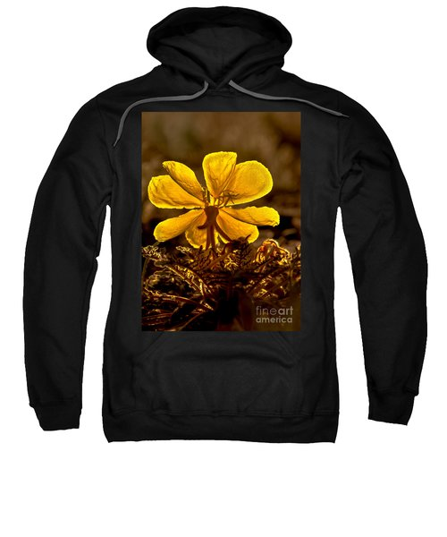 Dune Evening Primrose Sweatshirt