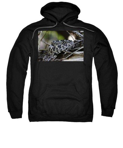 Eastern Diamondback-1 Sweatshirt by Rudy Umans