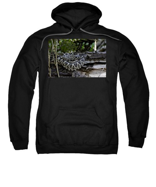 Eastern Diamondback-2 Sweatshirt by Rudy Umans