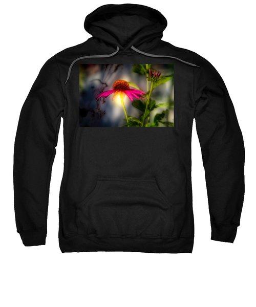 Echinacea Sunrise Sweatshirt