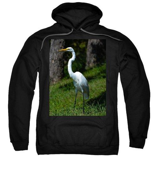 Egret - Full Length Sweatshirt