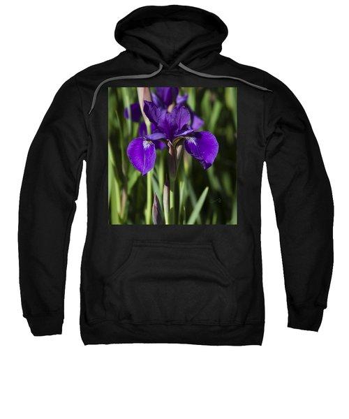 Eloquent Iris Sweatshirt