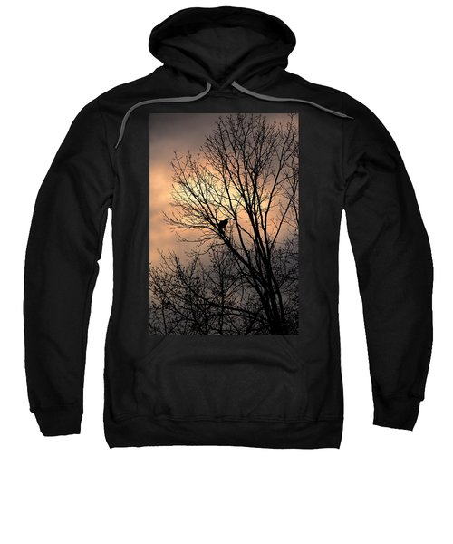 End Of The Day  Red Tailed Hawk Sweatshirt
