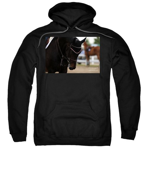 Equine Concentration Sweatshirt