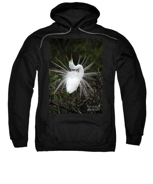 Fabulous Feathers Sweatshirt
