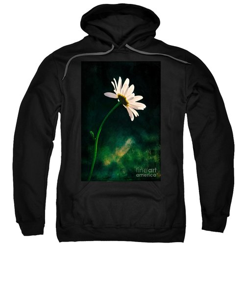 Facing The Sun Sweatshirt